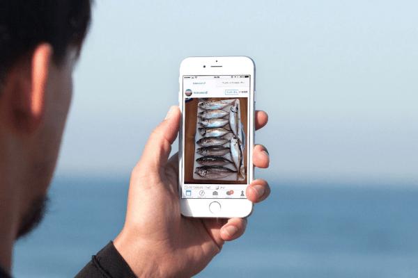 ウミーベが手がける釣りアプリは数万人の釣り人が活発にコミュニケーションを取る釣りプラットフォームに進化していた